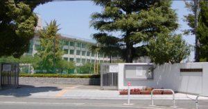 ファーストサマーウイカ 学歴 高校