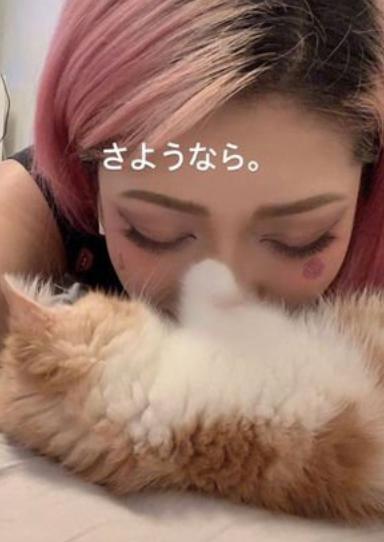 木村花 猫 どうなった