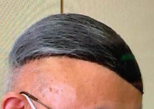鹿角市長 髪型 カツラ
