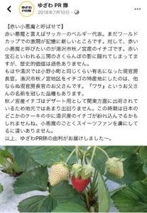 菅義偉 菅官房長官 実家 いちご農家 父親 秋の宮いちご 購入方法